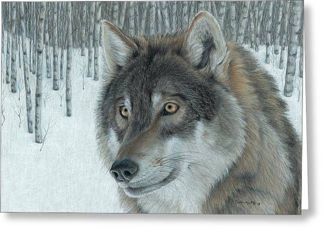 Wolf In Aspens Greeting Card
