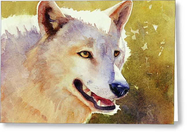Wolf In Morning Light Greeting Card