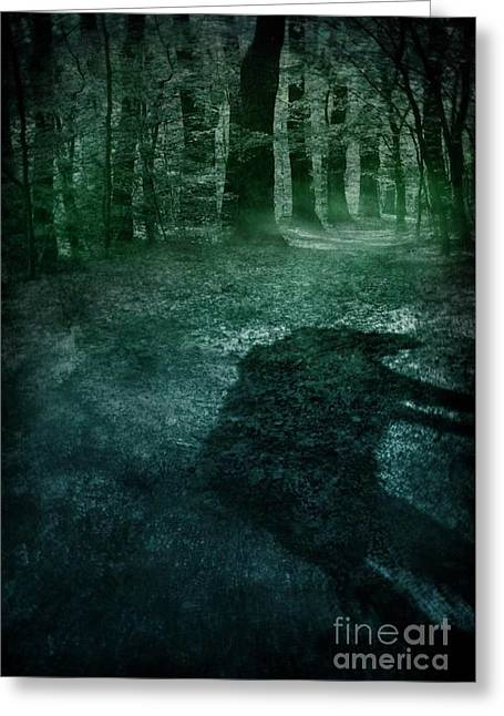 Wolf In The Woods Greeting Card by Mythja Photography