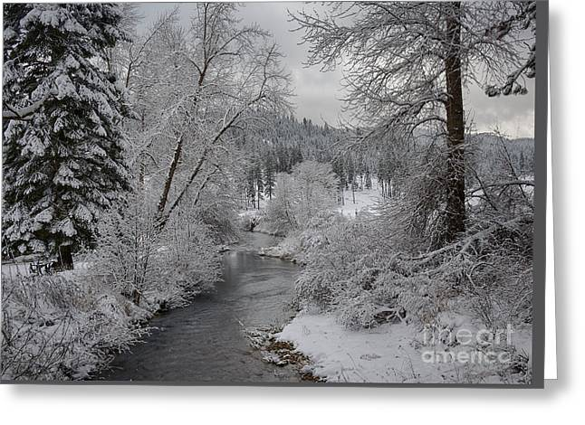 Wolf Lodge Creek Winter Greeting Card by Idaho Scenic Images Linda Lantzy