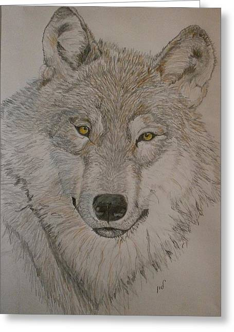 Wolf Greeting Card by Maria Woithofer