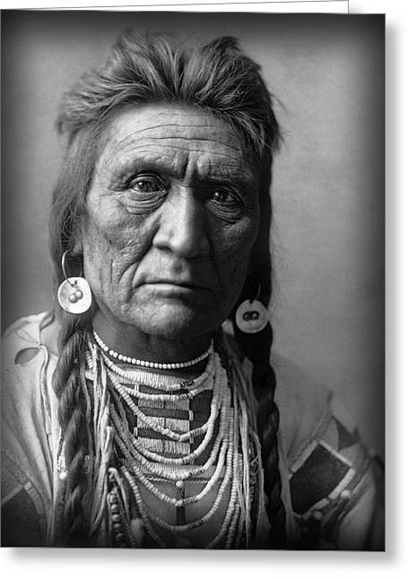 Wolf Of The Crow Tribe 1908 Greeting Card by Daniel Hagerman