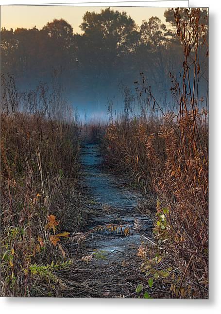 Prairies Greeting Cards - Wolf Road Prairie Trail Greeting Card by Steve Gadomski