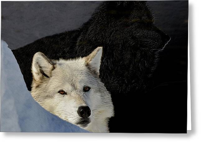 Greeting Card featuring the digital art Wolves, Real And Surreal by Kae Cheatham