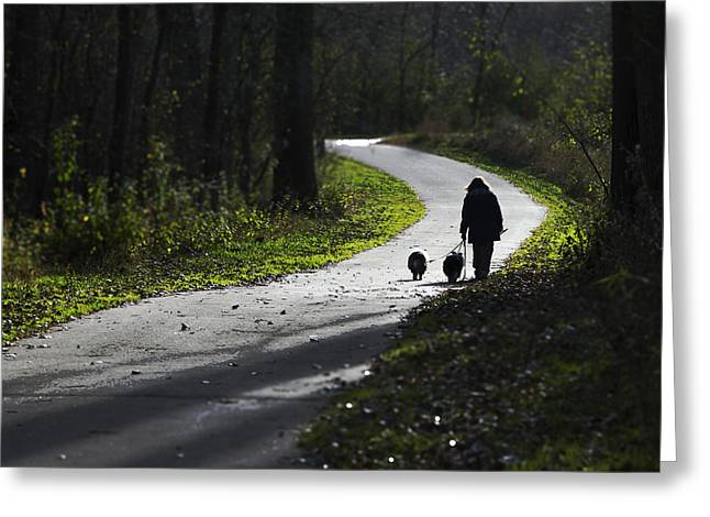 Woman And Border Collies Greeting Card
