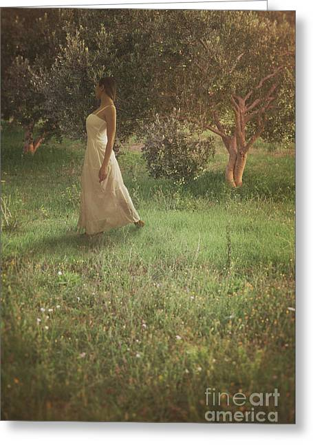 Woman In Olive Orchard Greeting Card by Mythja Photography