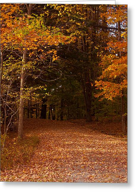 Vermont Photographs Greeting Cards - Wonderful Fall Colors Greeting Card by Robert  Torkomian