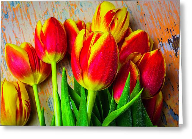Wonderful Spring Tulips Greeting Card by Garry Gay