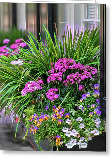 Greeting Card featuring the photograph Wonderful Window Boxes Of Charleston by Cindy Lark Hartman
