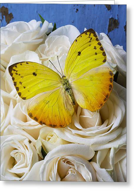 Wonderful Yellow Butterfly Greeting Card by Garry Gay