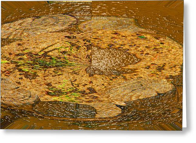 Greeting Card featuring the photograph Wood Abstracted by Lenore Senior