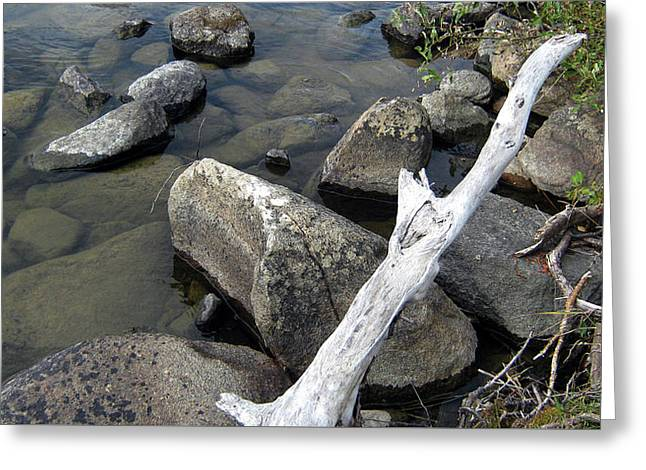 Wood And Rocks In Water Greeting Card