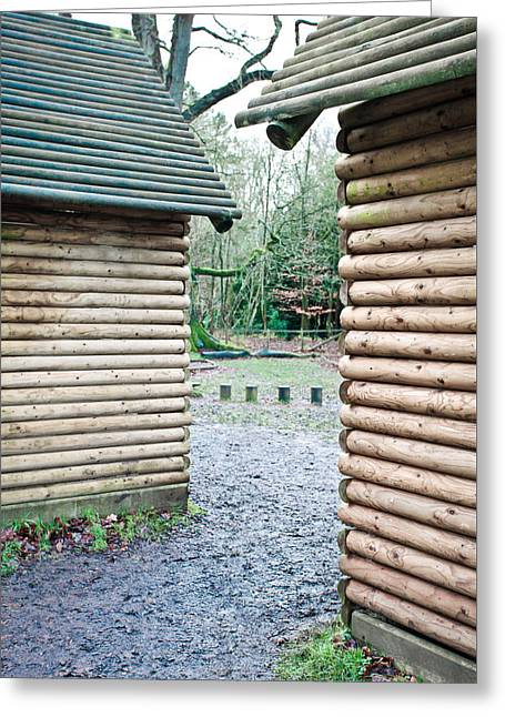 Wood Cabins Greeting Card by Tom Gowanlock