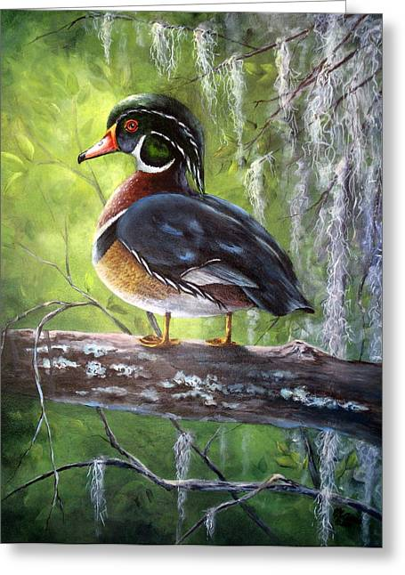 Wood Duck Greeting Card by Mary McCullah