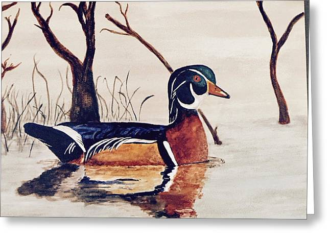 Wood Duck No. 2 Greeting Card