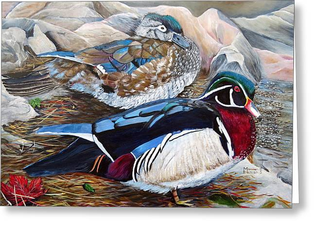 Wood Ducks  Greeting Card by Marilyn  McNish