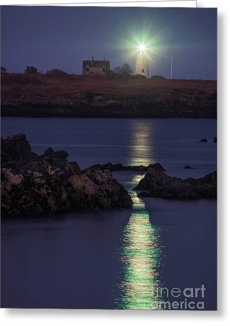 Wood Island Lighthouse At Night Greeting Card by Benjamin Williamson