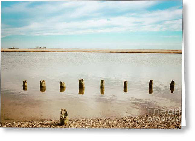 Greeting Card featuring the photograph Wood Pilings In Shallow Waters by Colleen Kammerer
