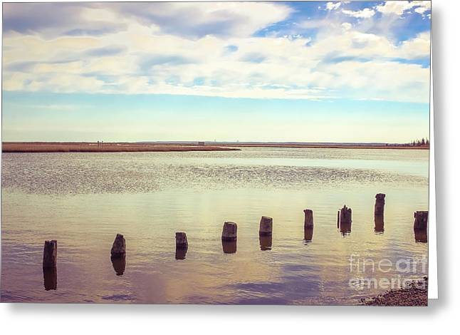 Greeting Card featuring the photograph Wood Pilings In Still Water by Colleen Kammerer
