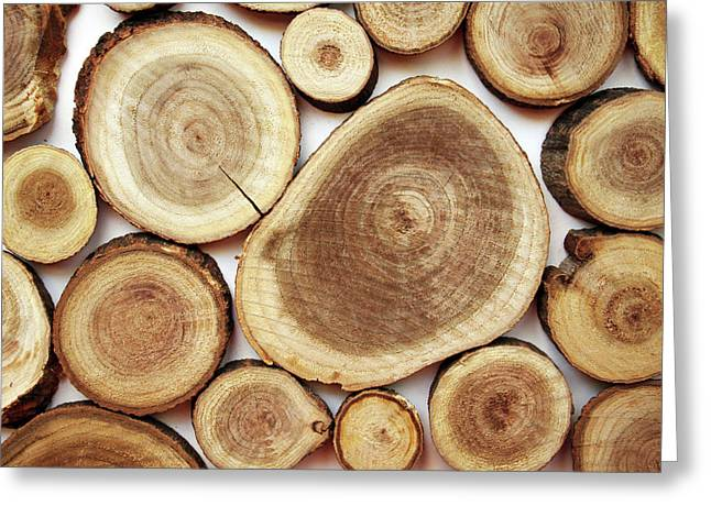 Wood Slices- Art By Linda Woods Greeting Card by Linda Woods