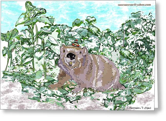 Woodchuck Chuck Greeting Card by Susie Morrison