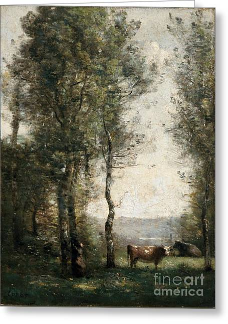 Wooded Landscape With Cows Greeting Card by MotionAge Designs