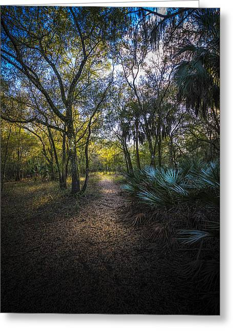 Wooded Path Greeting Card by Marvin Spates