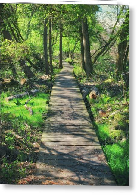 Wooded Path - Spring At Retzer Nature Center Greeting Card