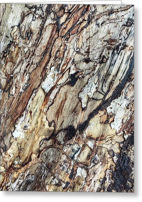 Wooden Bark Background Greeting Card by Tom Gowanlock