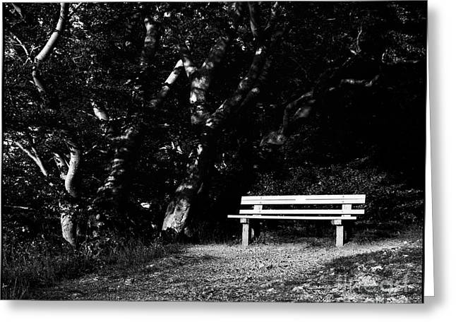 Wooden Bench In B/w Greeting Card