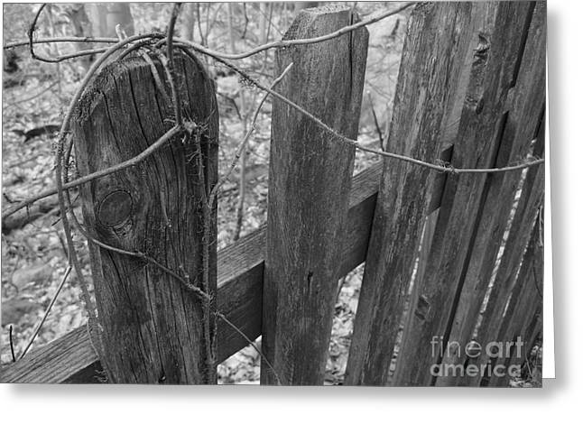 Wooden Fence Greeting Card by Jeff Breiman