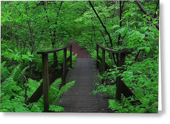 Wooden Foot Bridge Greeting Card