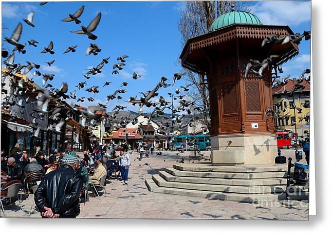 Wooden Ottoman Sebilj Water Fountain In Sarajevo Bascarsija Bosnia Greeting Card by Imran Ahmed