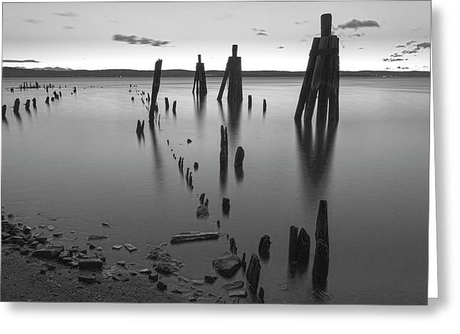 Wooden Soldiers Of The Hudson Monochrome Greeting Card