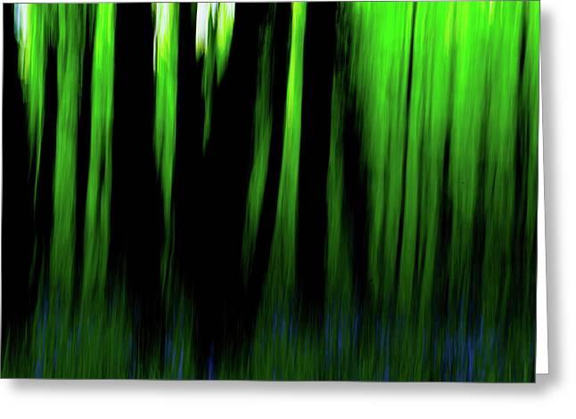 Woodland Abstract Iv Greeting Card
