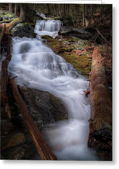 Greeting Card featuring the photograph Woodland Falls 2017 by Bill Wakeley