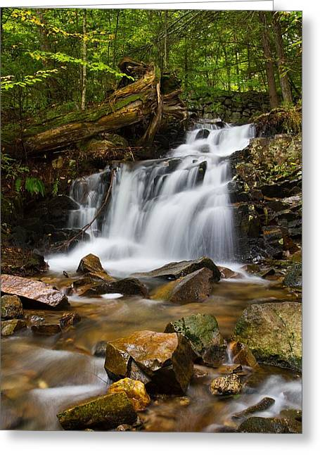 Woodland Falls Greeting Card by Mike Farslow