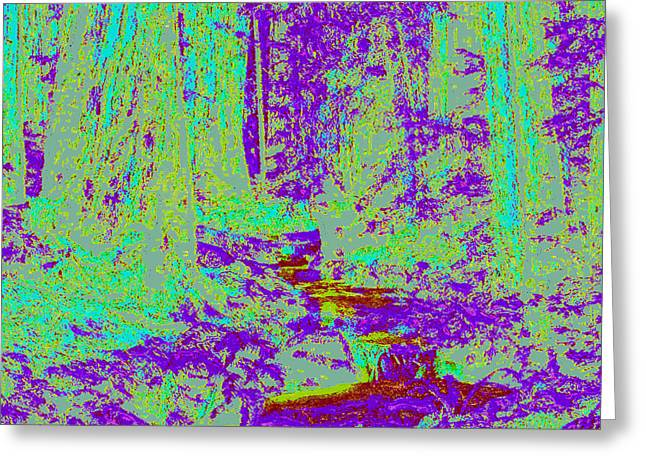 Woodland Forest D4 Greeting Card by Modified Image