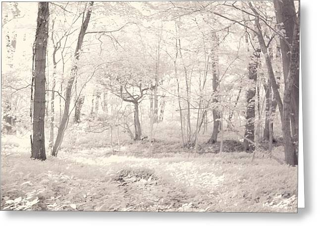 Woodland Greeting Card by Keith Elliott