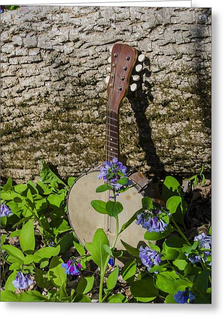 Woodland Music Greeting Card by Bill Cannon
