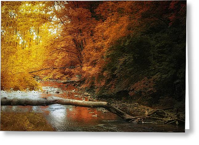 Woodland Stream Greeting Card