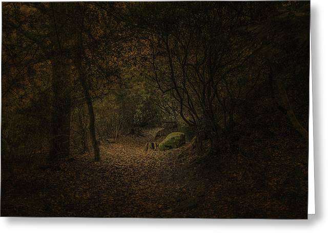 Greeting Card featuring the photograph Woodland Walk by Ryan Photography