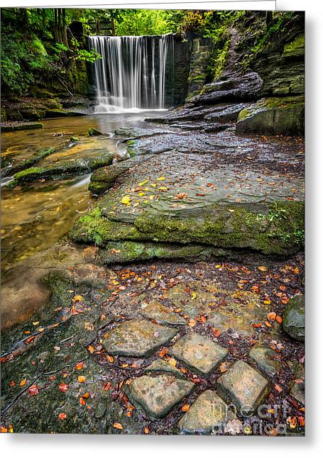 Woodland Waterfall Greeting Card by Adrian Evans