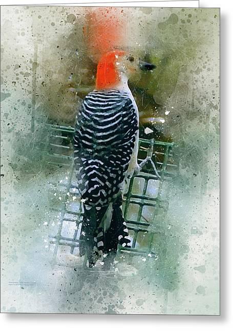 Woodpecker-2-a-8 Greeting Card