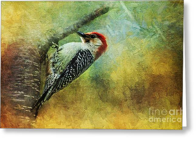 Woodpecker On Cherry Tree Greeting Card
