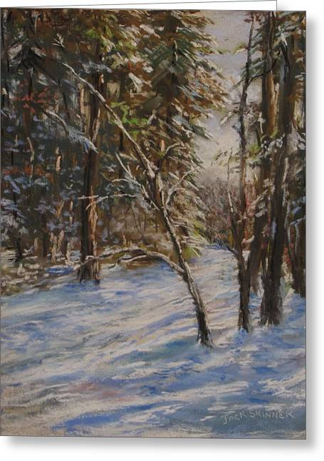 Woods And Snow At Two Below Greeting Card