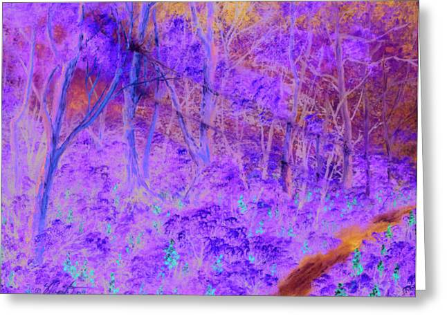 Woods By A Stream Greeting Card by Dennis Vebert