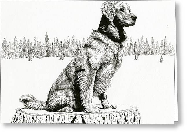 Woods Dog Greeting Card