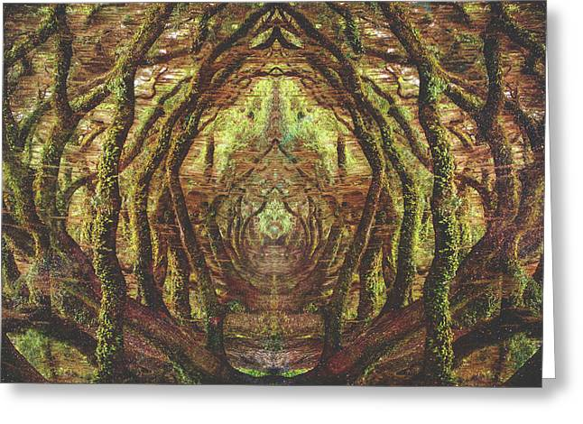 Woods II Greeting Card by Fran Rodriguez