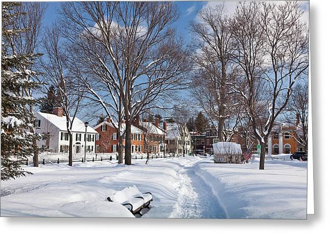Vermont Village Greeting Cards - Woodstock Green Greeting Card by Susan Cole Kelly